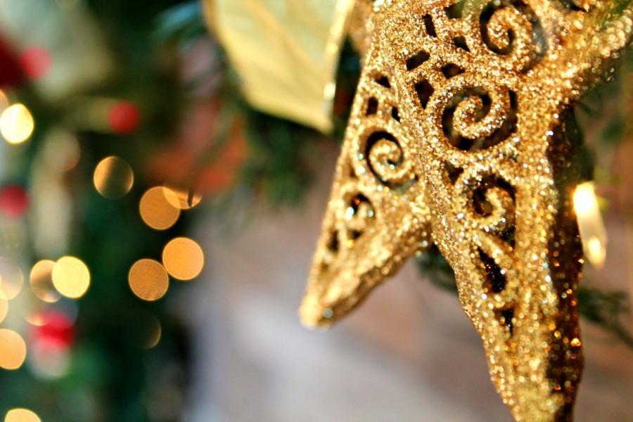 Holiday+Photo+Contest
