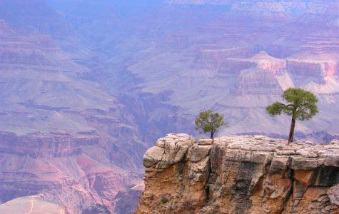 10 activities to do in Arizona