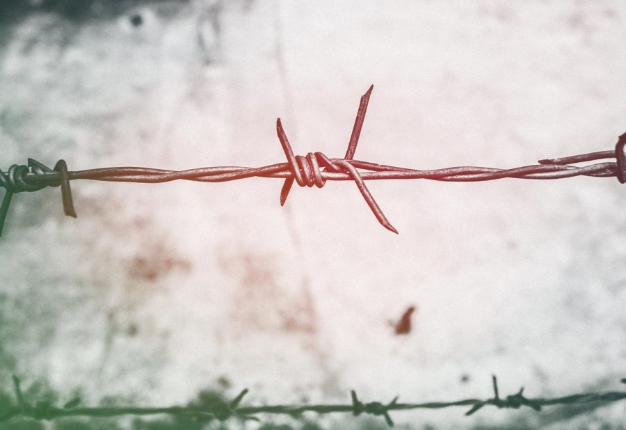 Barbed Wire photo by It's Me Neosiam via Pexels